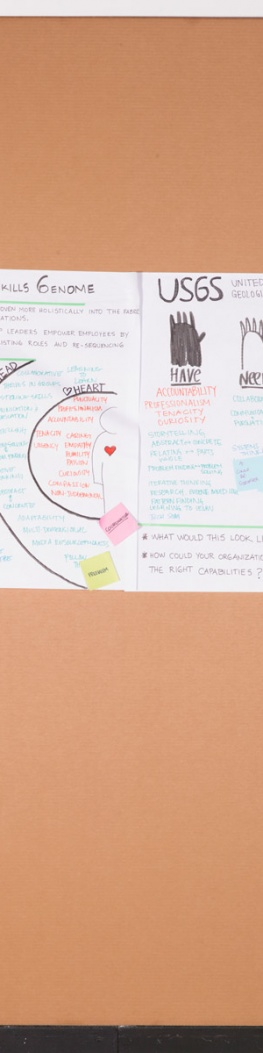 Social Design Skills Genome